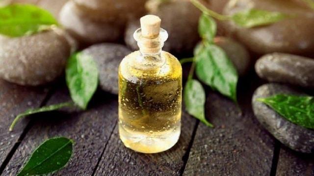 Dầu cây trà giúp loại bỏ mụn mang đến cho bạn một làn da khỏe mạnh và tràn đầy sức sống