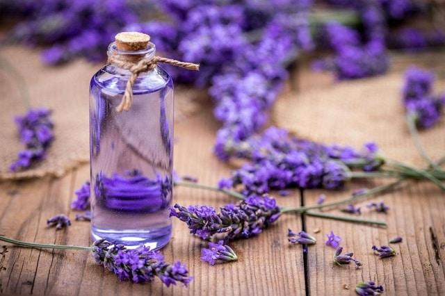 Tinh dầu hoa oải hương thường được sử dụng để kháng khuẩn và che đi mùi hôi ở vùng da dưới nách