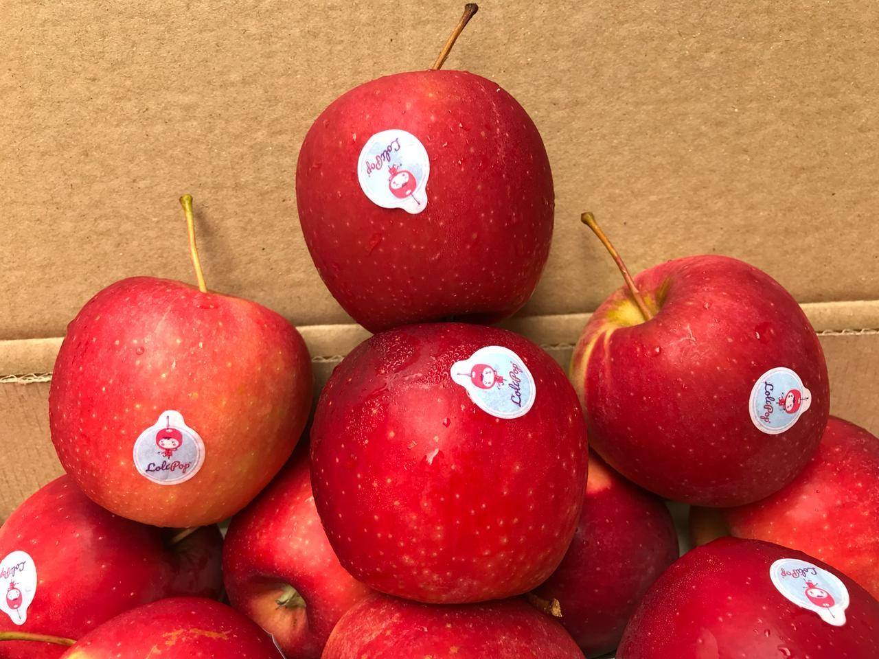 Trong quả táo có chứa các thành phần có lợi như axit malic, vitamin A, C, B1, B2, B6
