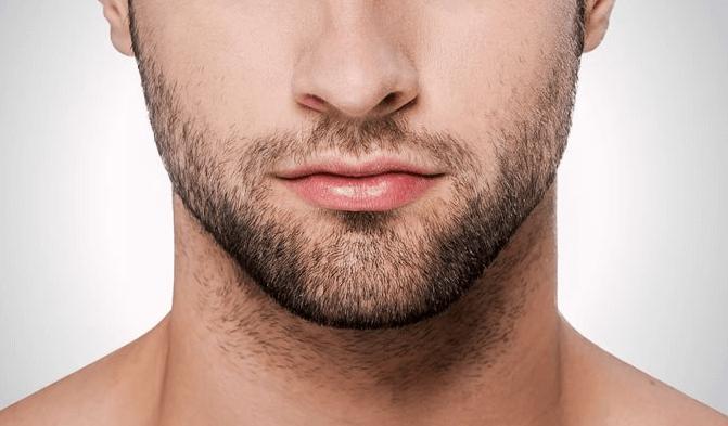 Hình ảnh râu quai nón ở đấng mày râu.